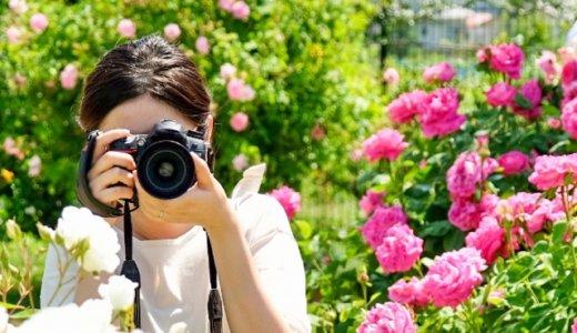【カメラを買う】どのカメラが良いか悩んでいる人は、基準を決めよう
